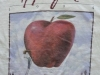 1994-Applefest t-shirt
